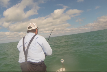 Fort Myers Fishing Report 4-23-14