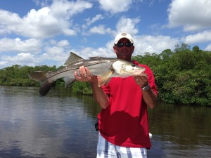Fort Myers Snook