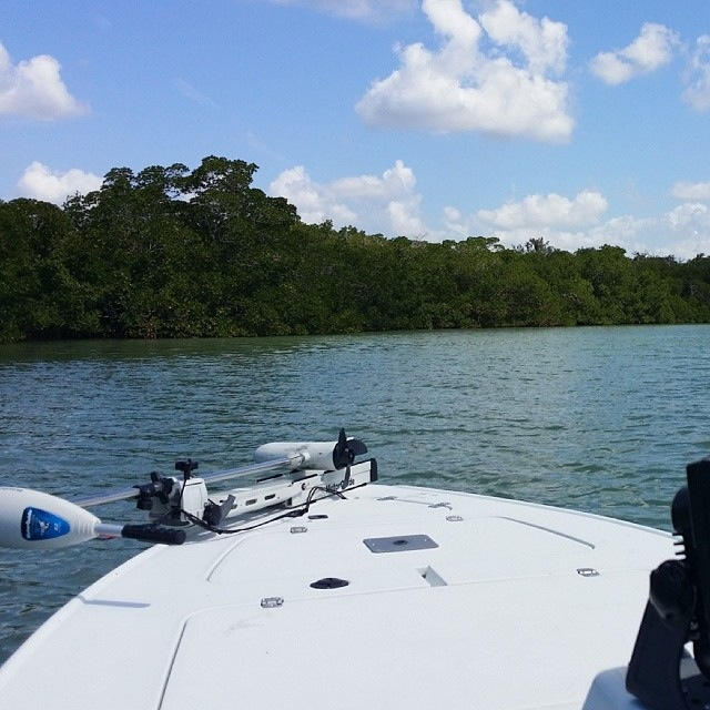 Fort Myers Fishing Report 4-16-14
