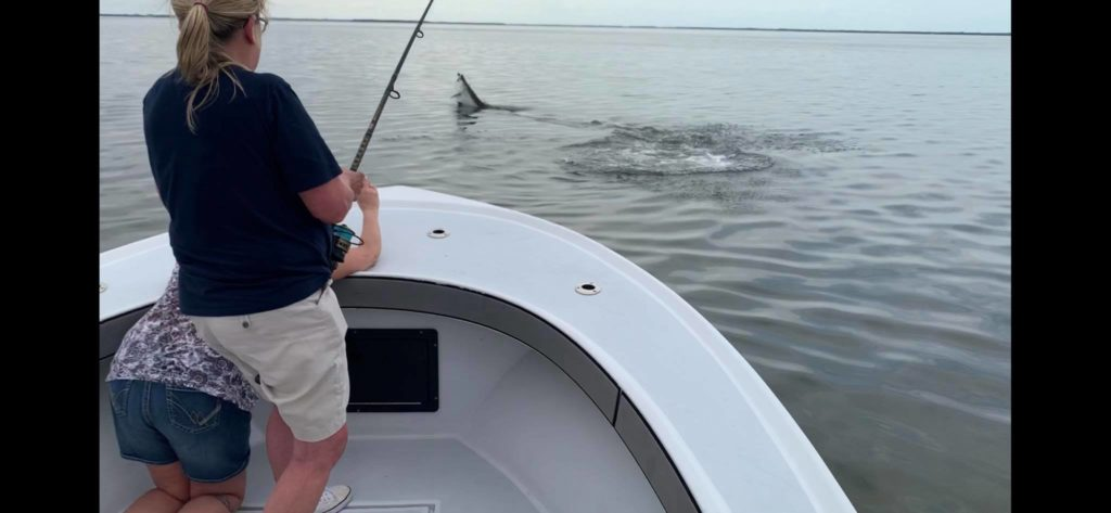 Tarpon Fishing In Fort Myers Florida